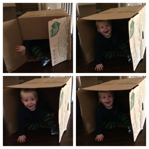 """Also, this empty box brought him a good hour of entertainment.  """"Where's Asher Wade...."""""""